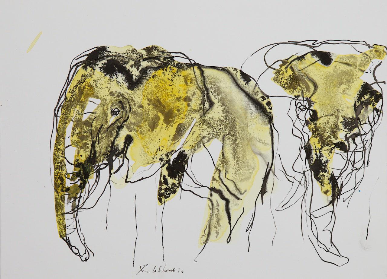 Jan van Lokhorst, tekeningen dieren