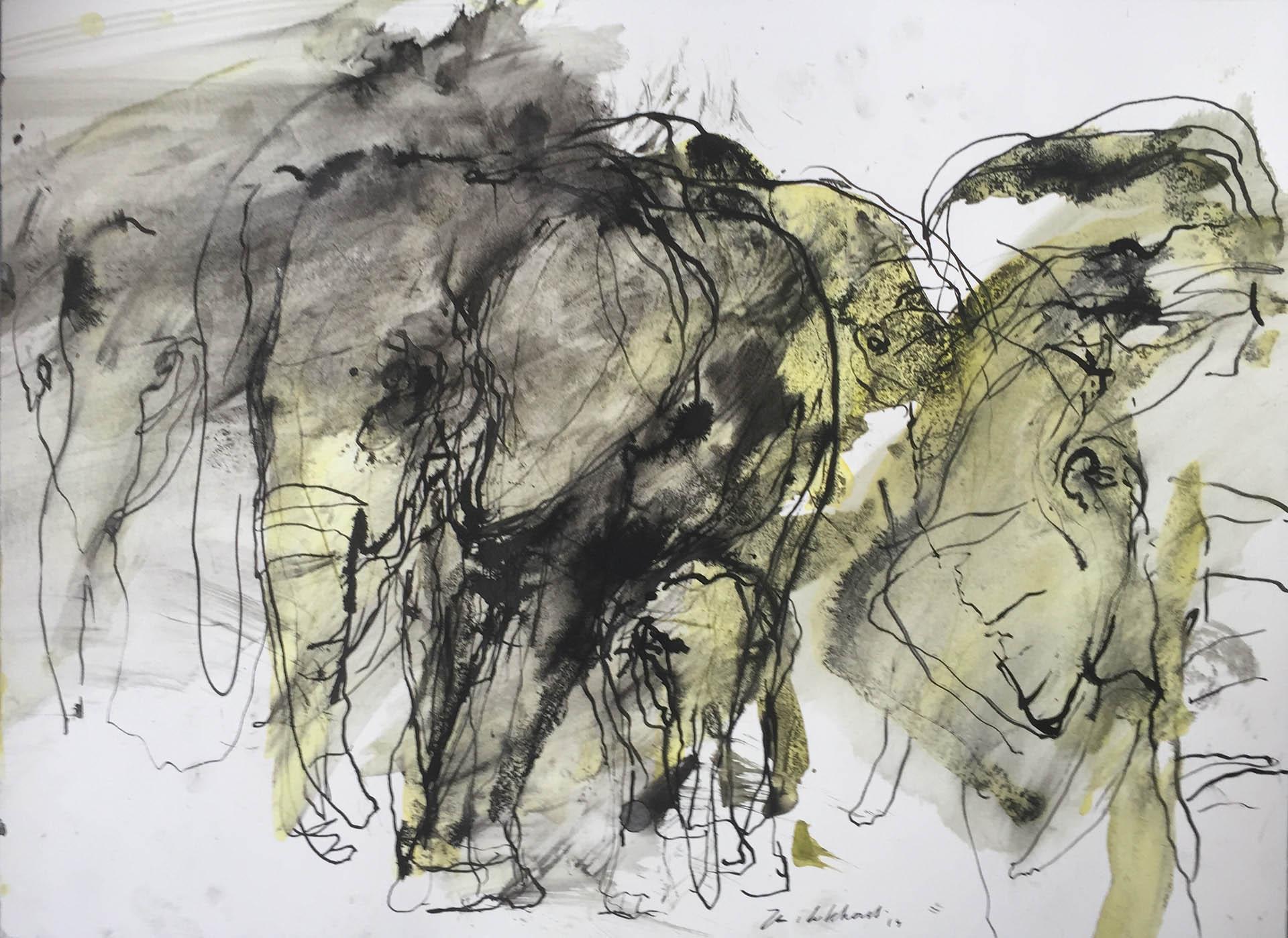Olifanten Jan van Lokhorst