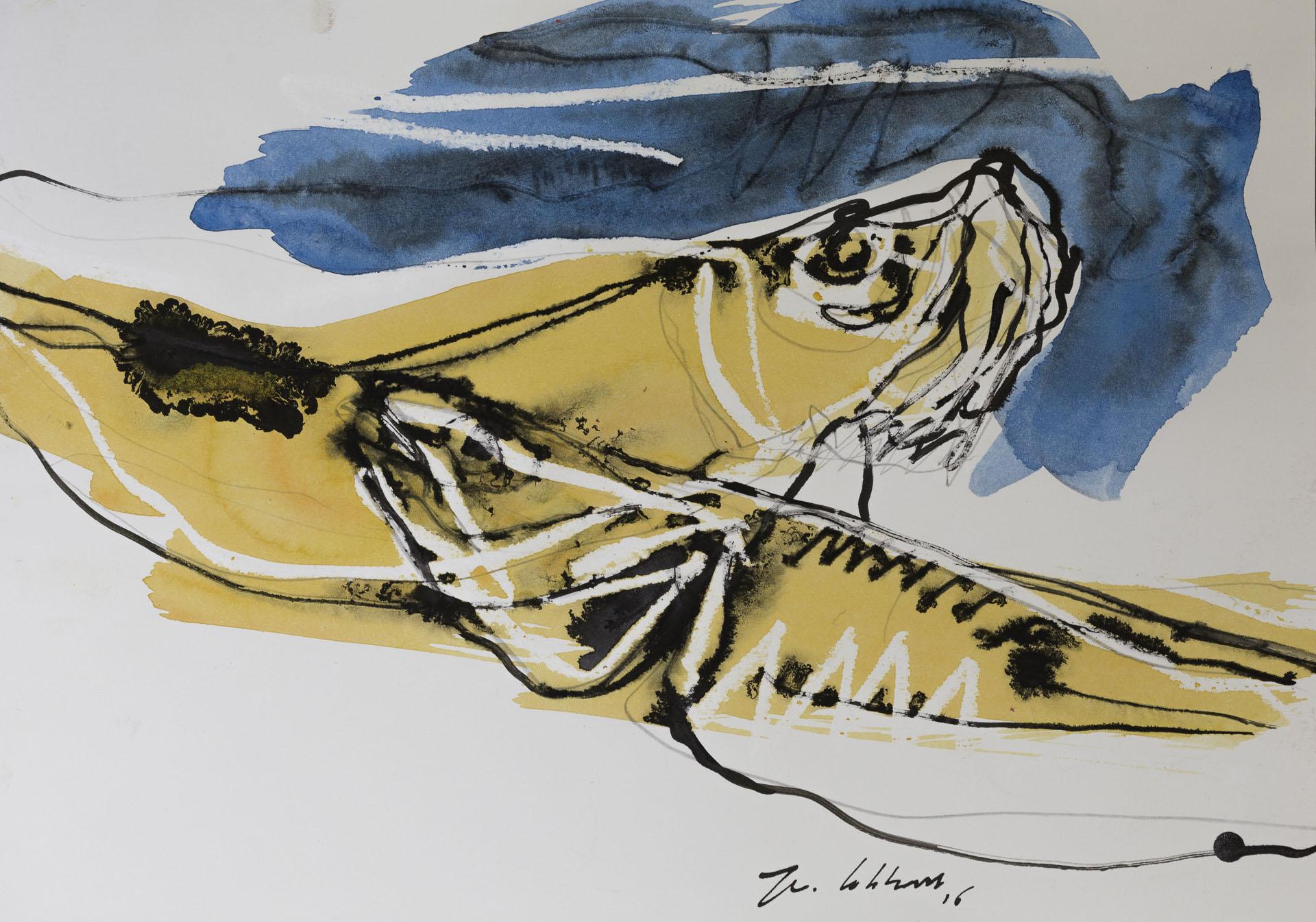 Vissen 1800