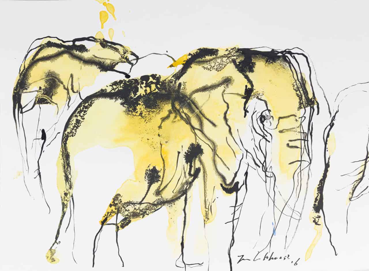 Olifanten, Jan van Lokhorst